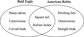 Triand easy online student testing according to the venn diagram which feature does a bald eagle and an american robin have in common ccuart Image collections